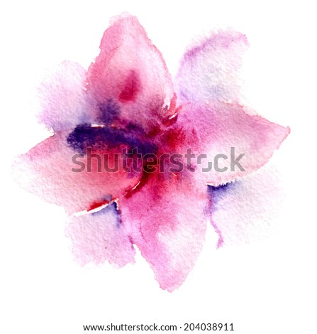 colored flower on a white background - stock photo