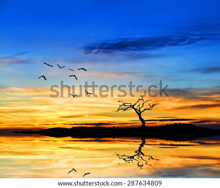 colored nature - stock photo