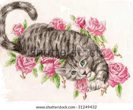 Colored Pencil Sketch of a collection of a tabby rose cat - stock photo