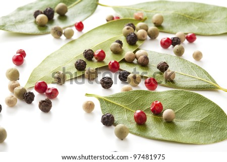 Colored peppers mix and bay-tree on the white background - stock photo
