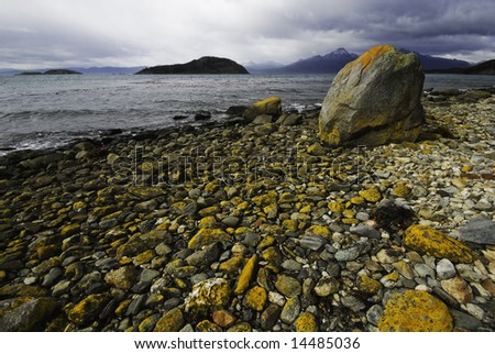 Colored yellow rocks paved the coastline inside the National Park of Tierra del Fuego, ushuaia - stock photo