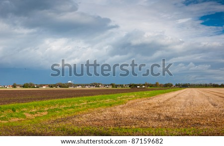 Colorful agricultural fields on the outskirts of a Dutch village in the province of North-Brabant - stock photo