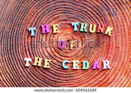 Colorful alphabet wooden letters spelling the word The trunk of the cedar
