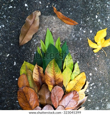 Colorful and dark background made of fallen autumn leaves. - stock photo