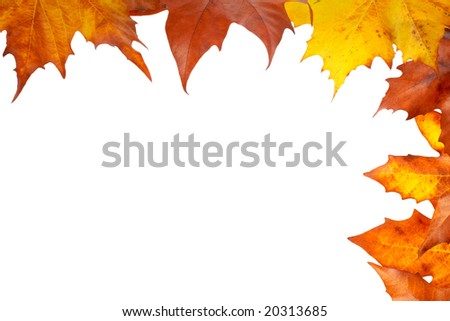 Colorful autumn corner made from leaves, isolated on white background