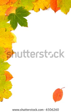 Colorful autumn corner made from leaves with soft shadow