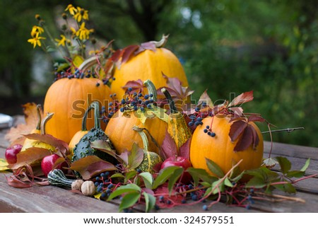 Colorful autumn decoration, pumpkins and fruits - stock photo