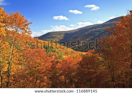 Colorful autumn foliage in Kaaterskill Clove in the Catskills Mountains of New York - stock photo
