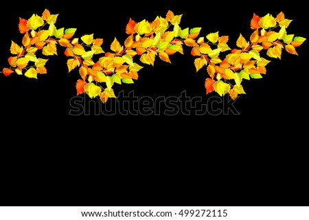 Colorful autumn foliage isolated on black background. Indian summer.