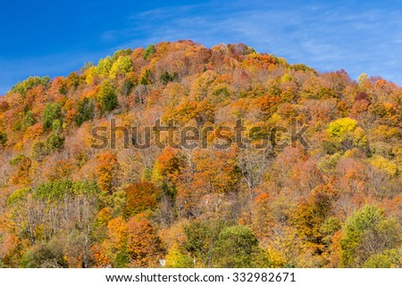colorful autumn foliage mountain in Vermont - stock photo