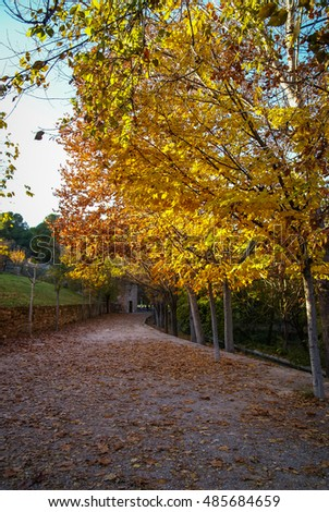 Colorful autumn landscape   in Caravaca de la Crus, Spain
