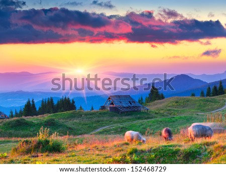 Colorful autumn landscape in mountain village. Sunset - stock photo