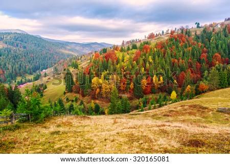 Colorful autumn landscape in the Carpathian mountains. Transylvania,Romania. Europe. - stock photo