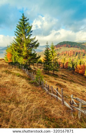 Colorful autumn landscape in the Carpathian mountains. Transylvania,Romania. Europe.