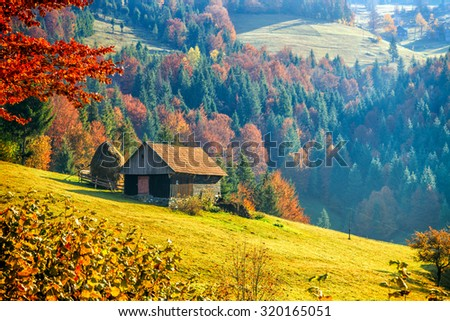 Colorful autumn landscape in the mountain village,  morning in the Carpathian mountains. Transylvania,Romania Europe. - stock photo