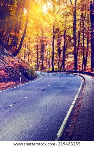 Colorful autumn landscape with curvy road - stock photo