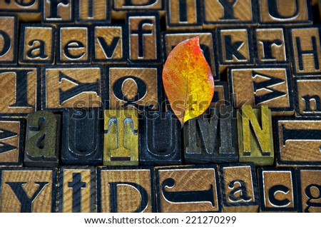 colorful autumn leaf in vintage wooden letterpress collage - stock photo