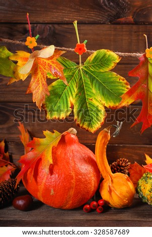 colorful autumn leaves and plants decoration on wooden background
