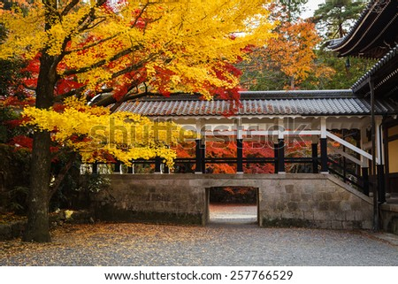 Colorful autumn leaves at Nanzenji temple, Kyoto, Japan