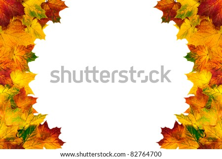 Colorful autumn leaves on white background build a round border - stock photo