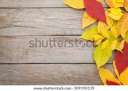 Colorful autumn leaves on wooden background with copy space - stock photo