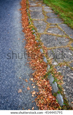 Colorful autumn leaves scattered on the asphalt. - stock photo