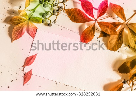 Colorful autumn leaves with blank letter, top view - stock photo
