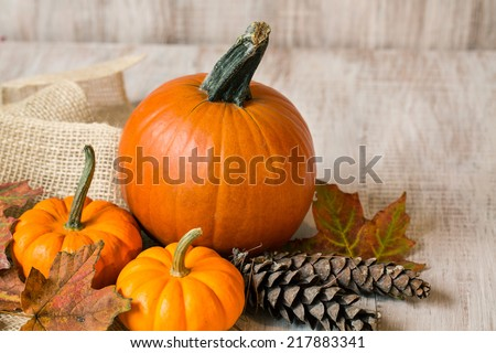 Colorful autumn leaves with pine cones and pumpkins