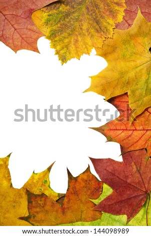 colorful autumn leaves with place for text