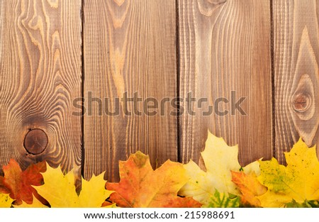 Colorful autumn maple leaves on wooden table with copy space  - stock photo