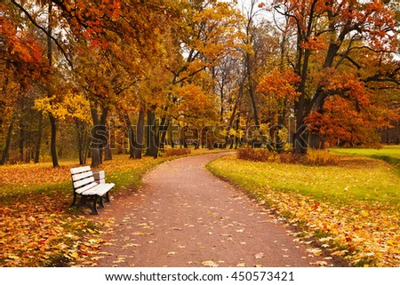 colorful autumn maple trees fallen leaves path bench in park - stock photo
