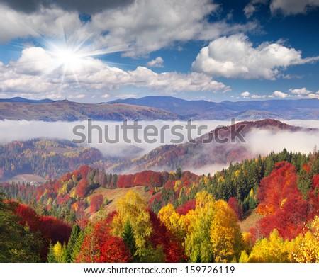 Colorful autumn morning in the Carpathian mountains. Sokilsky ridge, Ukraine, Europe.. - stock photo