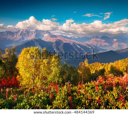 Colorful autumn morning in the Caucasus mountains. Sunny view of Ushba mountain from Mher mountainsides in Upper Svaneti, Georgia, Europe. Artistic style post processed photo.