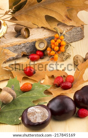 Colorful autumn picture with brown acorns,  chestnuts, rosehip, seabuckthorn, autumn leaves, on wooden background - stock photo