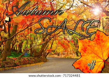 https://thumb7.shutterstock.com/display_pic_with_logo/176104528/717324481/stock-photo-colorful-autumn-sale-shopping-concept-717324481
