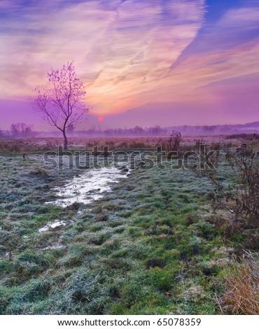 Colorful autumn sunrise - stock photo