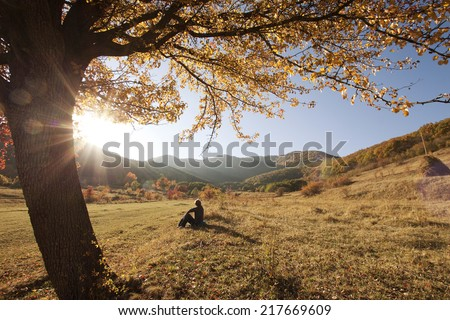 Colorful autumn tree at sunset with woman sitting and contemplating nature  - stock photo