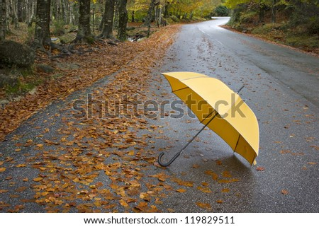 Colorful autumn trees and umbrella on a winding country road - stock photo