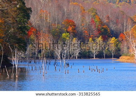 Colorful autumn trees in the lake - stock photo