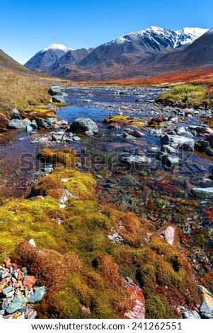 Colorful autumn tundra and mountain ridge behind the Malaya Belaya river stream, Russia - stock photo