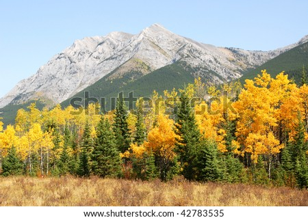 Colorful autumn view of rocky mountains and forests in kananaskis country, alberta, canada