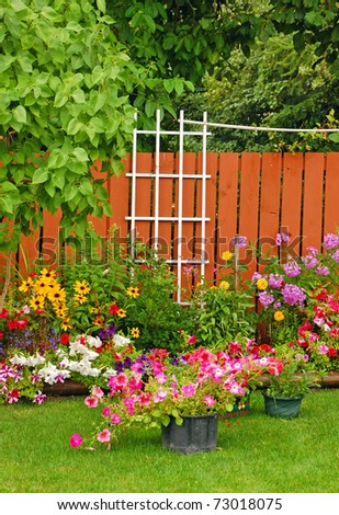 Colorful backyard garden in summertime - stock photo