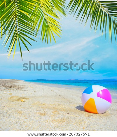 colorful ball under a palm tree by the shore - stock photo