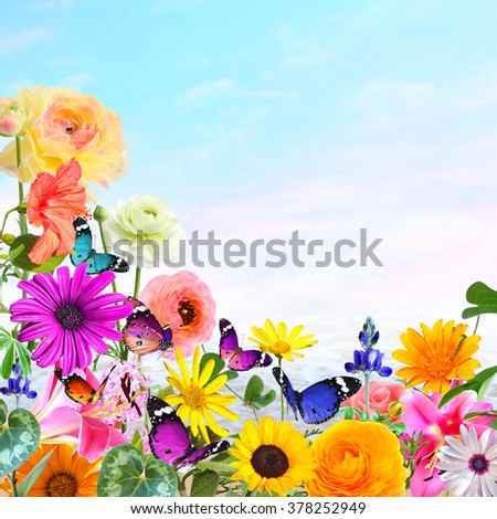 Colorful beautiful flowers and butterflies with magic landscape in the blur background. Nature abstract background with copy space.