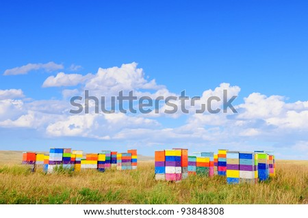 Colorful beehives in Montana, USA - stock photo