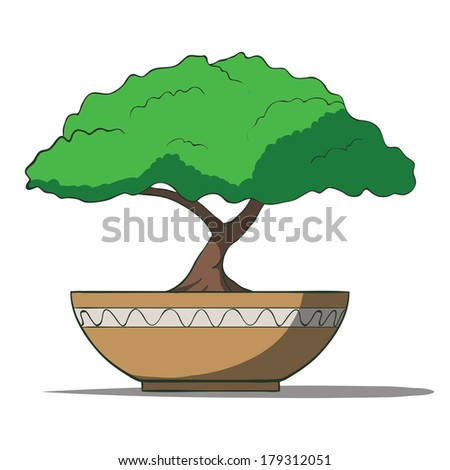 Colorful bonsai tree isolated on white background. Rasterized copy .Vector version of this image can also be found in portfolio. - stock photo