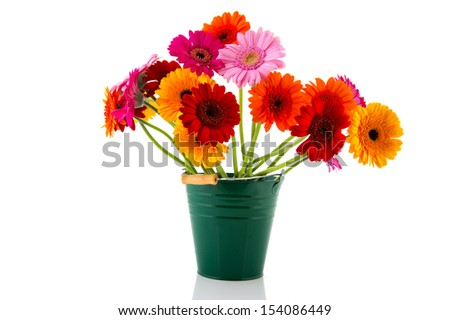 Colorful bouquet Gerber flowers isolated over white background