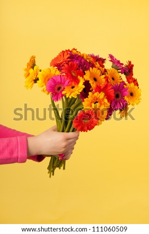 Colorful bouquet Gerber on yellow background