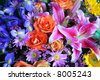 Colorful bouquet of exotic flowers - stock photo