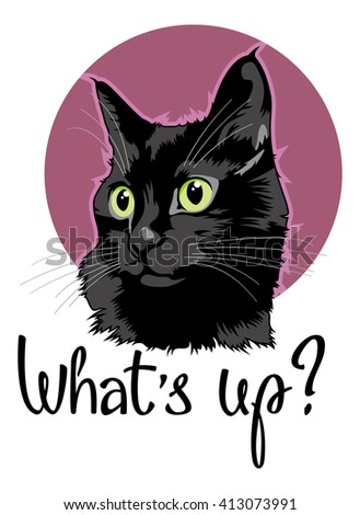 Colorful cat portrait with hand drawn lettering. Raster clip art. - stock photo